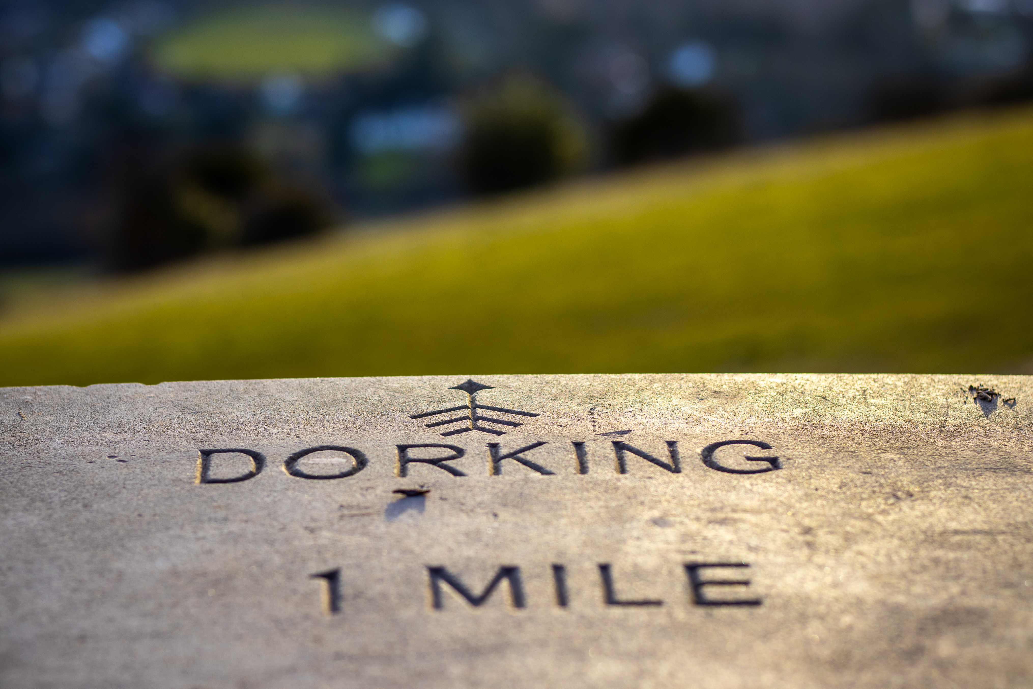 Close up of a sign engraved on stone reading